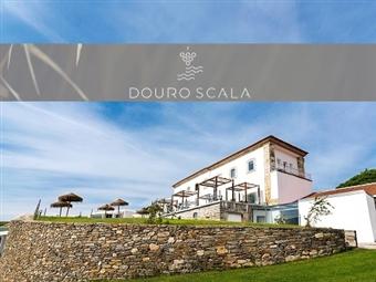 Hotel Douro Scala 5*: Estadia Romântica no Douro com Pequeno-almoço, Piscina Interior Aquecida, Sauna, Ginásio, Banho Turco e Jacuzzi desde 37€.