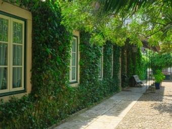 Casa do Foral: 1 a 5 Noites em Rio Maior num espaço verdadeiramente rural desde 29€. O refúgio perfeito para uma escapada.