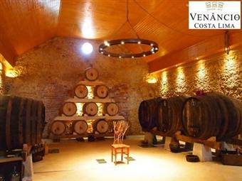 Enoturismo: Prova de Vinhos e Degustação de Produto Regional Premium para 2 ou 4 Pessoas desde 15€ com a Venâncio da Costa Lima em Palmela.