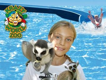 KRAZY WORLD ZOO: Experiências Únicas no Algarve. Um mundo de actividades para toda a família durante todo o ano desde 7.76€.