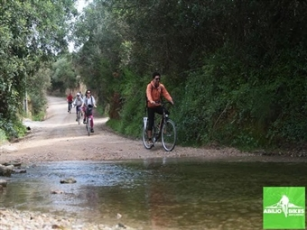 Passeio de Bicicleta de 4 Horas para 2 Pessoas com Guia Profissional, Equipamento, Seguro e 3 Rotas à escolha desde 55€ em Tavira.