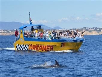 Grutas e Golfinhos em ALBUFEIRA: Passeio Junto ás Lindas Falésias Algarvias veja Golfinhos e Grutas desde 25€. Desfrute do Momento!