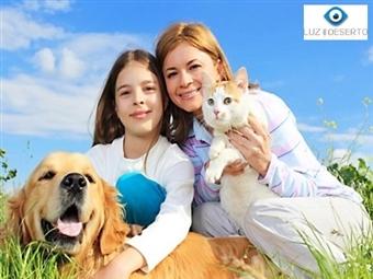 Famílias e Animais de Estimação numa Sessão Fotográfica única em Belém. Inclui 20 Fotografias Editadas e Poster 15x20 desde 19,90€.
