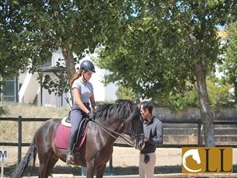 Aula de Equitação, Passeio a Cavalo e Almoço em Sintra desde 28€. Desfrute deste momento.