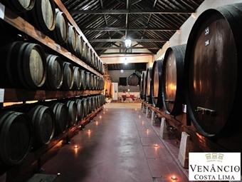 ENOTURISMO: Prova de Vinhos e Degustação de Produtos Regionais Premium para 2 ou 4 Pessoas desde 15€ com a Venâncio da Costa Lima em Palmela.