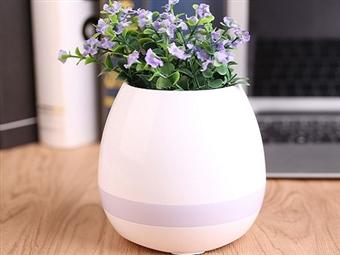 Vaso Musical Táctil com Colunas Bluetooth e Luzes LED por 23.50€. Reproduza melodias ao tocar nas folhas da sua planta! VER VIDEO. PORTES INCLUÍDOS.