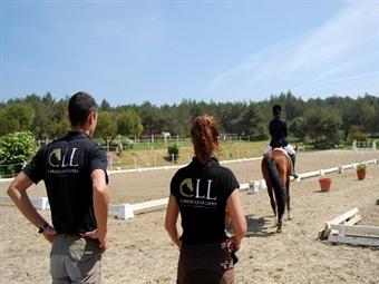 Momento de Lazer! Aula de Equitação, Passeio a Cavalo e Almoço em Sintra desde 28€. Desfrute deste momento.