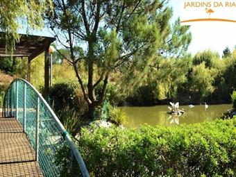 Jardins da Ria 4* by Flagworld Hotels: Estadia com Jantar entre a Ria e o Oceano desde 31€. Uma pausa merecida em Aveiro.