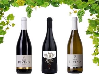 Caixa de 6 Garrafas de Vinho de Adro da Sé Reserva Tinto 2012, Dom Divino Tinto 2015 ou Dom Divino Branco 2016 desde 22€. PORTES INCLUÍDOS.