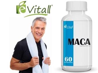 MACA da e-Vitall: Frasco de 60 Comprimidos para 30 Dias desde 9.50€. Aumenta a ENERGIA e VITALIDADE. ENVIO IMEDIATO e PORTES INCLUÍDOS.