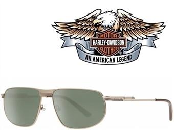 Óculos de Sol HARLEY DAVIDSON HDX875 COG-2 com estojo da marca e proteção contra raios ultravioleta por 25€. PORTES INCLUÍDOS.