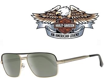 Óculos de Sol HARLEY DAVIDSON HDX 866 COG-2 57 com estojo da marca e proteção contra raios ultravioleta por 24€. PORTES INCLUÍDOS.