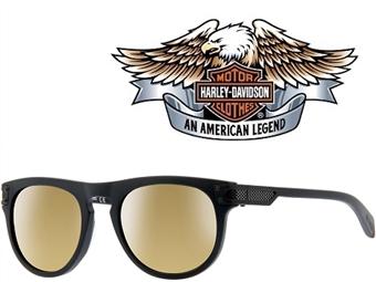 Óculos de Sol HARLEY DAVIDSON HD2034 4902G com estojo da marca e proteção contra raios ultravioleta por 29€. PORTES INCLUÍDOS.