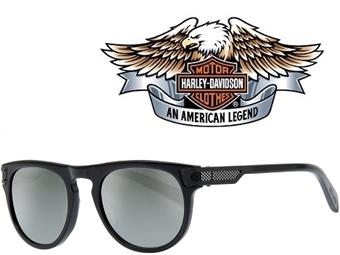 Óculos de Sol HARLEY DAVIDSON HD2034 4901C com estojo da marca e proteção contra raios ultravioleta por 29€. PORTES INCLUÍDOS.