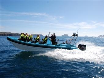 Passeio de Barco pela Costa Leste da Arrábida para 1 ou 2 Pessoas desde 28.90€! Deslumbre-se com as águas cristalinas e vista paradisíaca!