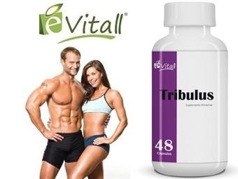 Tribulus da é-Vitall: Frasco de Cápsulas para 16 Dias desde 10€. Aumenta a Massa Muscular e Reduz o Colesterol. ENVIO IMEDIATO e PORTES INCLUÍDOS.