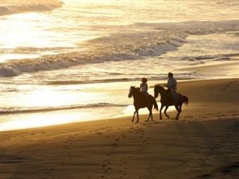 Hotel Rural Monte da Lezíria: 1 ou 2 Noites com Pequeno-Almoço e Passeio a Cavalo em Reserva Natural desde 29€. A Costa Vicentina espera por si!
