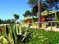 Vale Paraíso Natur Park na Nazaré: 2 ou 3 Noites ZEN em Chalet entre o Verde e azul da natureza.