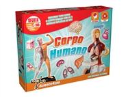 Corpo Humano 2 em 1: O conjunto que inclui modelos anatómicos do corpo humano para montar.