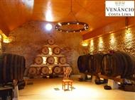 Prova de Vinhos e Degustação de Produto Regional Premium para 2 ou 4 Pessoas com a Venâncio da Costa