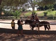 DIVERSÃO GARANTIDA: Baptismo a Cavalo, Acesso à Piscina e Almoço no