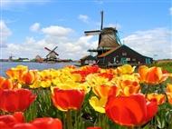 HOLANDA: Viagem de 6 Dias por Amesterdão, Roterdão e Utrecht com Voos de Lisboa ou Porto.
