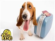 HOTEL PARA CÃES: Estadia de 4 dias com Pet Creche e Oferta de Banho em Lisboa.