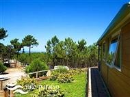 Vale Paraíso Natur Park na Nazaré: 1 ou 2 Noites em Chalet entre o Verde da Natureza. Relaxe.