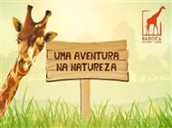 Badoca Safari Park & Hotel Vila Park: Estadia com Pequeno-Almoço e Entrada no Parque. Divirta-se