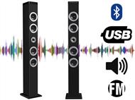Torre de Som Bluetooth com 20W RMS, Rádio FM Incorporado, Função Mãos-Livres e Carregamento por USB