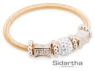 Pulseira CHARM Dourada. Uma bracelete flexível com diferentes pendentes de enfeite