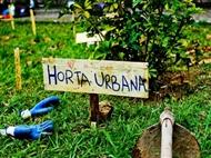 Curso Online HORTA URBANA ECOLÓGICA com Certificado no iLabora. Cultive no Seu Terraço.