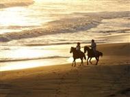 Hotel Rural Monte da Lezíria: 1 ou 2 Noites com Pequeno-Almoço e Passeio a Cavalo em Reserva Natural